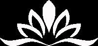 bijeli_lotus